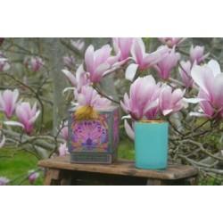 Bougie Parfumée Les Moissons. Fleur de Coton